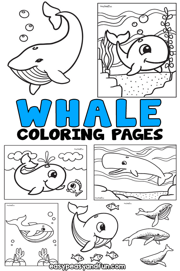 Printable Whale Coloring Pages