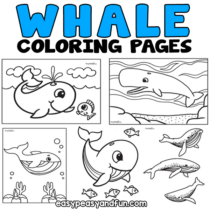 Whale Coloring Pages – 30 Printable Sheets
