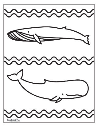Whales Coloring Page