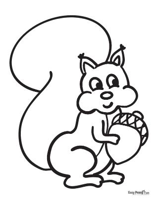 Coloriage écureuil mignon