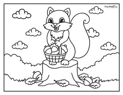Écureuil et panier