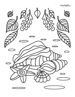 Seashells and Leaves