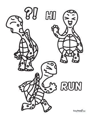 Three Reptile Friends