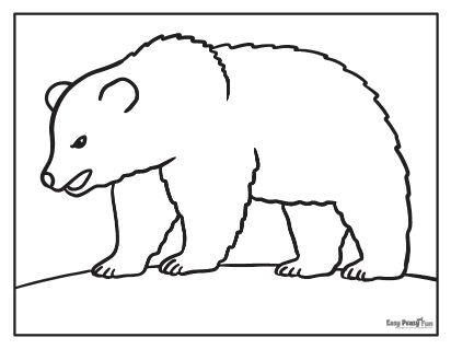 Feuille de coloriage ours