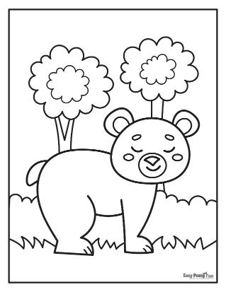 Ours à l'état sauvage