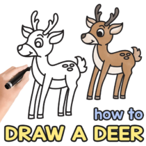 How to Draw a Deer – Step by Step Drawing Tutorial