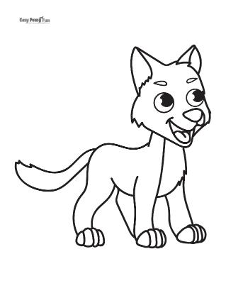 Loup curieux