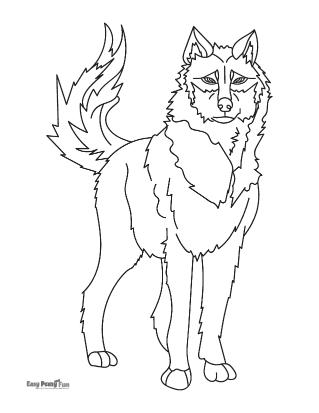 Coloriages de loups réalistes